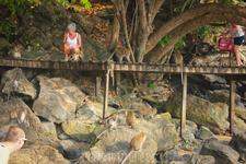 Лестница на пляж за сколой