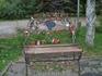 Лавочка предложений в городском саду
