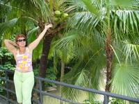 Нонг Нуч. Много разных пальм с различными плодами.