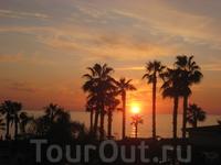 В отели да и по всему Пафосу целая традиция наблюдать за закатом, в некоторых кафе специальным образом выстраивают стулья и столы, чтоб за бокалом Кипрского ...