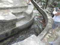«Семь источников» является заповедным местом у Линдоса. Под тенью величественных сосен и многовековых платанов бегут ручейки и родники, которые соединяются, протекая по длинному (186 метров) искусств