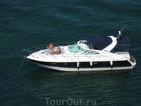 "Заплывшие ""гости"" в бухте  Пальма Нова(Терранова). Вид с балкона номера."