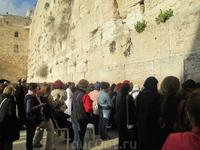 А перед Стеною молились. Мужчины и женщины – каждый на своей стороне. И толпа эта тоже поражала… Люди самых разных возрастов, одетые и выглядящие по-разному ...