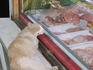 сладкий сон одесского кота.