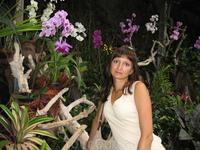 в галерее орхидей