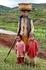 рисовые террасы семья за работой