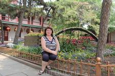 В последний день перед отбытием в Сиань решила посетить пекинский зоопарк
