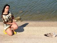 Чайка подпустила к себе совсем близко и даже позирует!)))