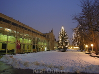 декабрь 2011г. Рождественская елка у Колоннады