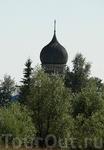 В Новгородской области можно видеть много старых церквей, купола которых выглядывают из зарослей кустарника или виднеются среди молодых лесов.