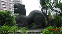Пантера напротив отеля