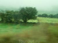 Итак, под мерный перестук дождя, мы отправились утром 7-го ноября со станции Moncloa в город Сеговию. Было ясно, что поднимаемся в горы, закладывало уши ...