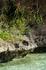 Сегодня на острове создана эко-система засушливого прибрежного леса, такие леса ранее занимали все прибрежные регионы острова Маврикий. Это естественный ...