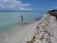 Островки Key West прекрасны, там много дайверов. Ну а мы просто валялись на пляже или в воде. Там так мелко, что особо не поплавать, можно именно валяться ...