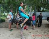 и страусов.....