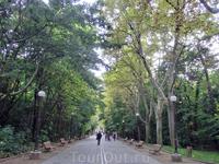 Аллеи парка, несмотря на выходной и довольно теплый день практически безлюдны.