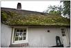 Аlle naturlichen? спросили бы немцы, Ja.Ja. alle natuurlijke- подтвердят голландцы. Крыши покрыты соломой, ведь на болотах произрастало достаточное количество ...