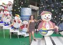 Новогодние каникулы в Тайланде