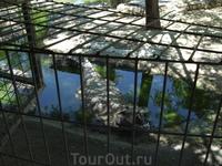 Торремолинос. Крокодиловая ферма