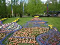 А вот и собор Василия Блаженного в Москве, расцвёл!!!