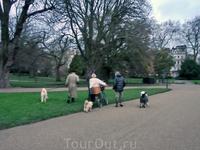 Обычное утро в Гайд-Парке - это много прогуливающихся с собаками и много бегунов на утренней пробежке.