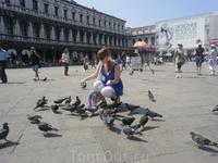 Кормим голубей на площади Сан.Марко, Хоть это и запрещено, но как удержаться от такого удовольствия!