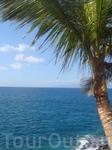 Канарские острова (Атлантический океан)