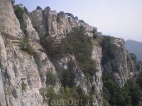 Длина дороги, действующей круглый год, — более 3,5 км. На ней имеется три станции: «Мисхор» (нижняя, 86 м над уровнем моря), «Сосновый Бор» (средняя, 391 ...