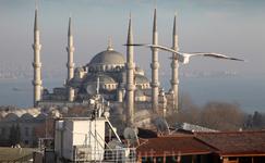 Голубая мечеть с площадки отеля