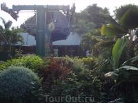 здраствуй вершина ямайского туризма