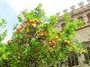 Валенсия - город контрастов