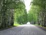 Просто симпатичная дорога на Урале