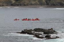 Очень много там было пловцов, аквалангистов и таких вот любителей покататься на каяках или байдарках.