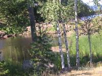 Валаамский пейзаж.