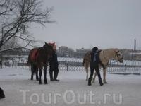 Ну чтоб почувствовать на сколько было комфортно ранее - на лошадках покататься можно.