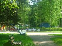 Аллеи нашего парка
