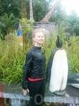 я изображаю пингвина, зоопарк