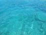 Даже на глубине вода чистая и прозрачная и видно дно.