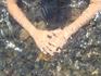 в нашем море тоже бывает чистая вода