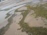 Помимо поистине изумительного, переливающегося белоснежного песка пляжи пестрят водорослями, особенно после дождя.