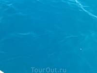 Вода в озере Курнас насыщенного голубого цвета