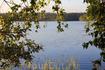 утро на озере...