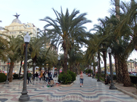 Но и сам город Аликанте очень зеленый и пальмы в нем растут стройными рядами на знаменитой Экспланаде, аллеях и в небольших скверах. Кстати, Union&Fenix ...