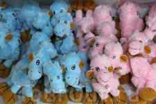 Верблюжатки, верблюжата, верблюды, верблюдища - продаются в любом туристическом месте...