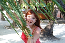 пальмовые ветки