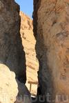 Ущелье в оазисе Шебика говорят, нужно проходить через него и загадывать желание... посмотрим, сбудется ли...