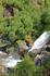талые воды ледника спускаются с гор красивейшими водопадами