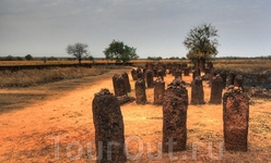 Каменные кольца Вассу в Гамбии - самое большое скопление мегалитов на планете. А неподалёку - национальный парк реки Гамбия, в котором можно поплавать ...