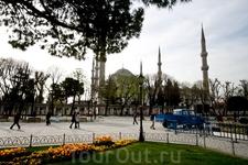 Голубая мечеть днём