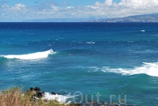 Мауи серфенгисты